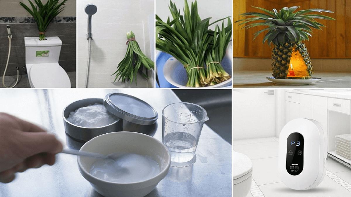 Cách khử mùi hôi nhà vệ sinh hiệu quả giúp nhà vệ sinh luôn thơm